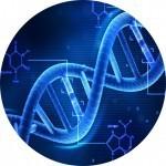 Генетическая экспертиз