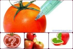 chem opasnu gmo produktu
