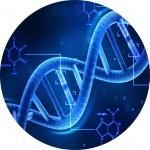 Генетическая экспертиза СПб